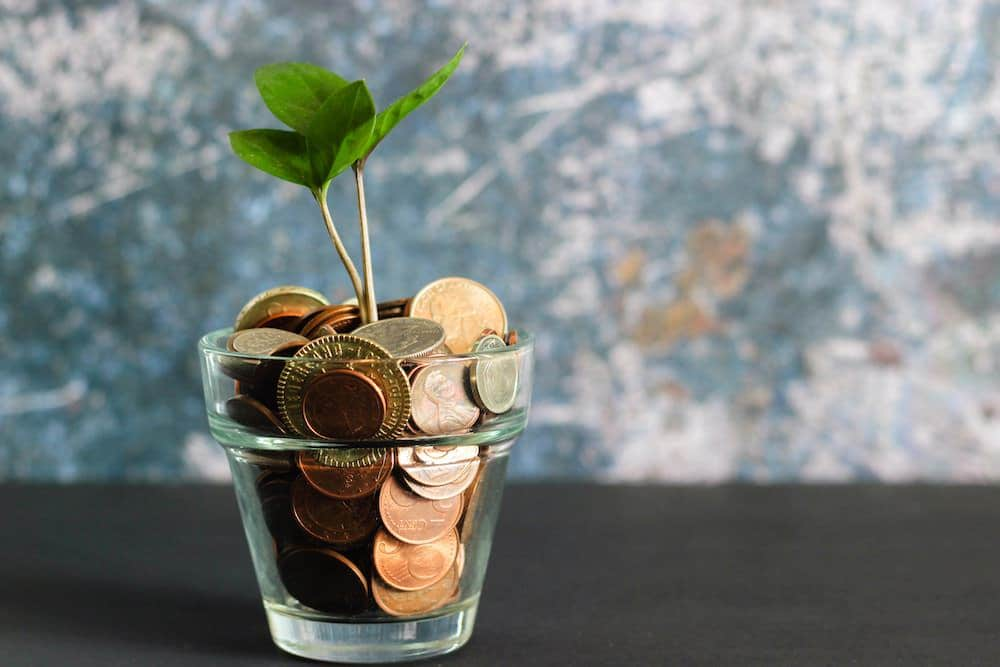 Zinspilot Tagesgeld Festgeld Flexgeld